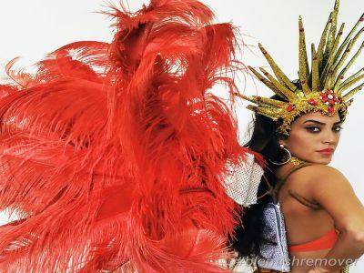 קרנבל בריו עם להקה ברזילאית